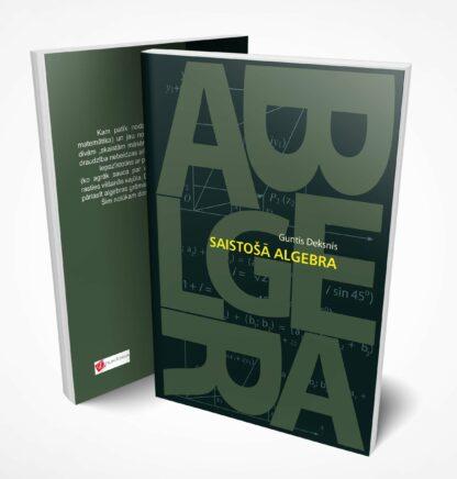 Guntis Deksnis, Saistošā algebra